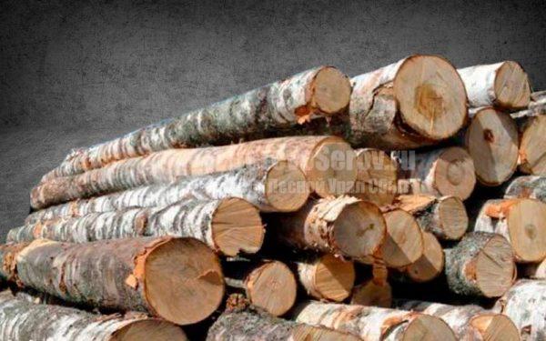 Купить дрова долготьем из осины и березы 4 куба