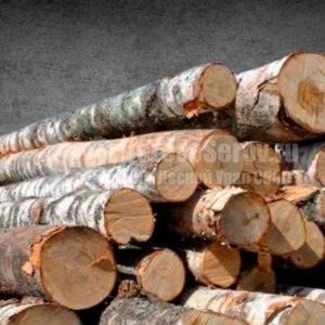 Купить дрова долготьем из осины и березы 7 кубов